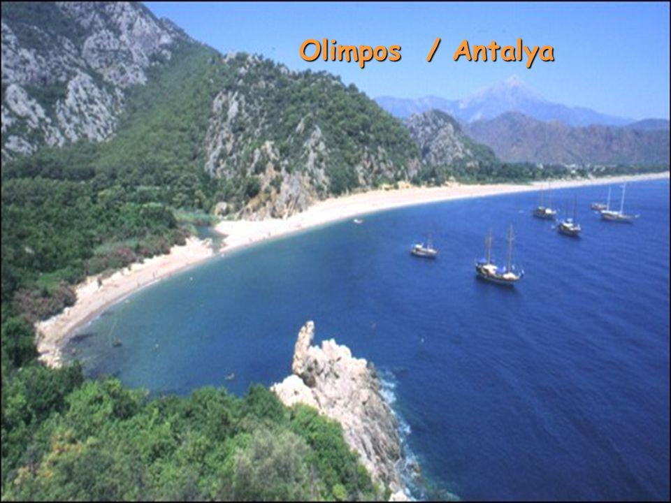 Olimpos / Antalya