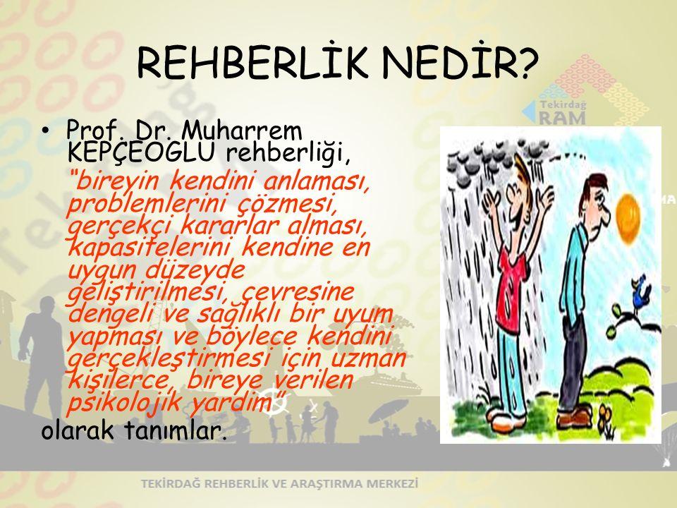 REHBERLİK NEDİR.Prof. Dr.