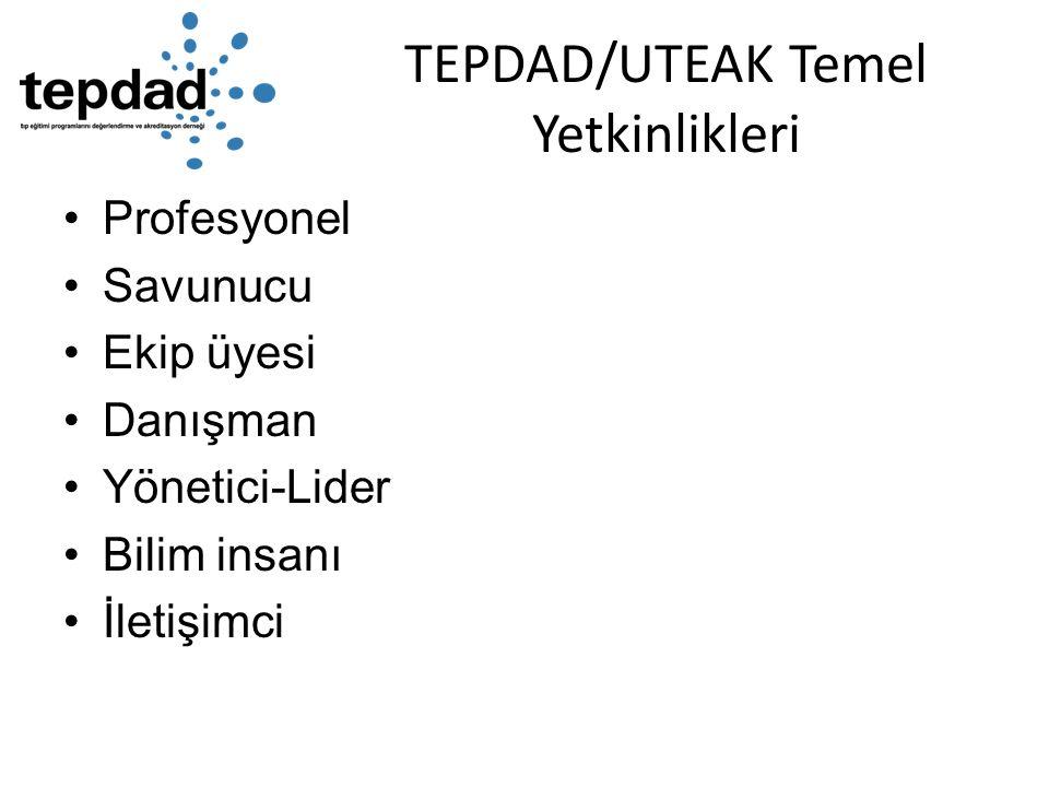 TEPDAD/UTEAK Temel Yetkinlikleri Profesyonel Savunucu Ekip üyesi Danışman Yönetici-Lider Bilim insanı İletişimci