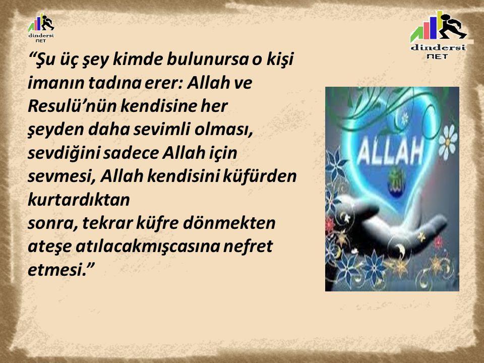 """""""Şu üç şey kimde bulunursa o kişi imanın tadına erer: Allah ve Resulü'nün kendisine her şeyden daha sevimli olması, sevdiğini sadece Allah için sevmes"""