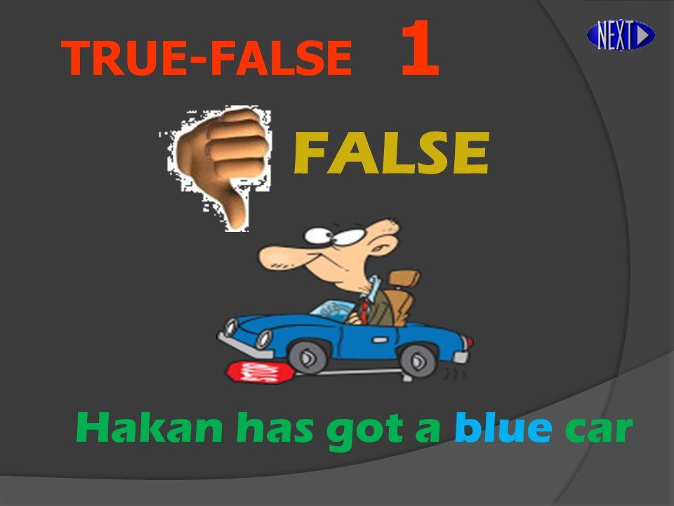 TRUE-FALSE 1 FALSE Hakan has got a blue car