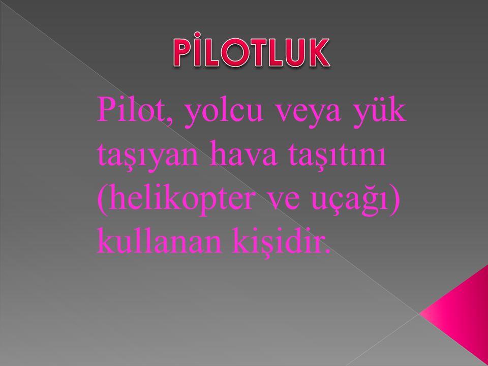 Pilot, yolcu veya yük taşıyan hava taşıtını (helikopter ve uçağı) kullanan kişidir.