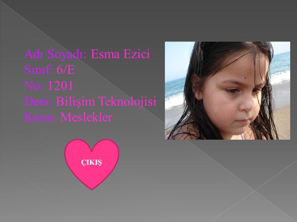 Adı Soyadı: Esma Ezici Sınıf: 6/E No: 1201 Ders: Bilişim Teknolojisi Konu: Meslekler ÇIKIŞ