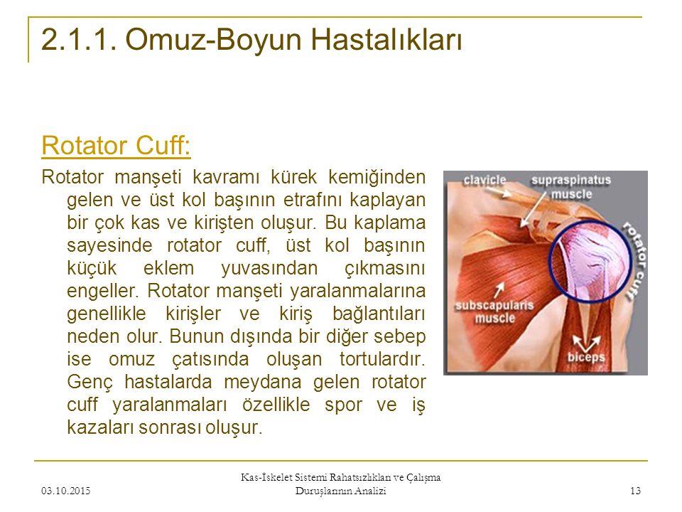 Rotator Cuff: Rotator manşeti kavramı kürek kemiğinden gelen ve üst kol başının etrafını kaplayan bir çok kas ve kirişten oluşur.