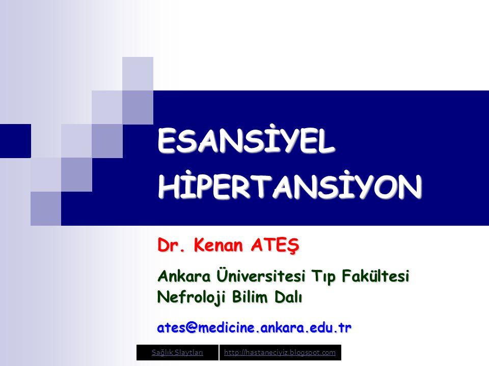 ABD ve Türkiye'de hipertansif hastaların durumu Burt VL, et al.
