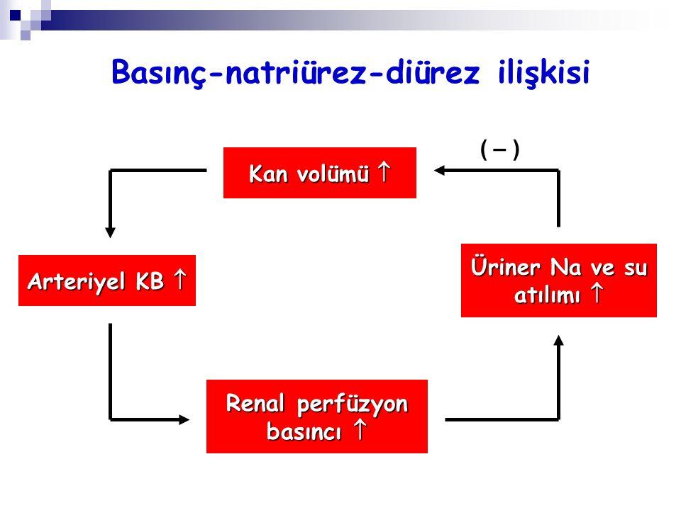 Basınç-natriürez-diürez ilişkisi Kan volümü  Arteriyel KB  Renal perfüzyon basıncı  Üriner Na ve su atılımı  ( – )