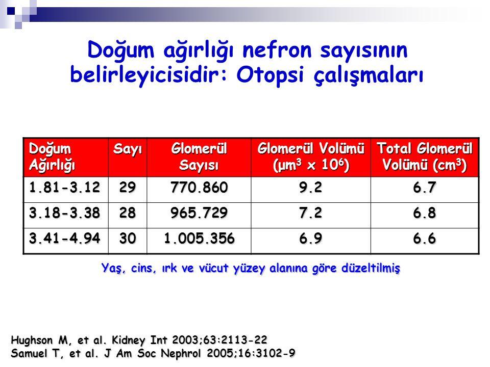 Doğum Ağırlığı Sayı Glomerül Sayısı Glomerül Volümü (μm 3 x 10 6 ) Total Glomerül Volümü (cm 3 ) 1.81-3.1229770.8609.26.7 3.18-3.3828965.7297.26.8 3.4