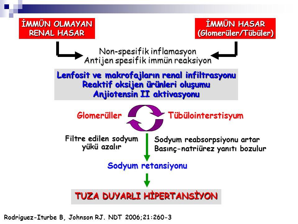 İMMÜN OLMAYAN RENAL HASAR İMMÜN HASAR (Glomerüler/Tübüler) Non-spesifik inflamasyon Antijen spesifik immün reaksiyon Lenfosit ve makrofajların renal i