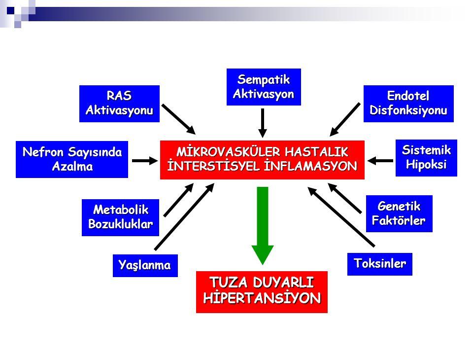 MİKROVASKÜLER HASTALIK İNTERSTİSYEL İNFLAMASYON TUZA DUYARLI HİPERTANSİYON SempatikAktivasyon EndotelDisfonksiyonuRASAktivasyonu Toksinler Yaşlanma Ne