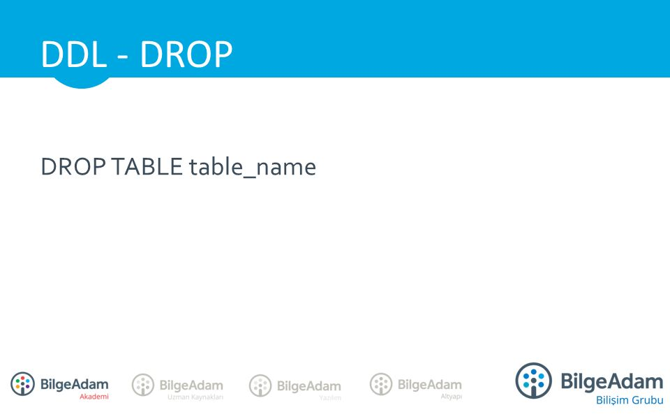 DROP TABLE table_name DDL - DROP