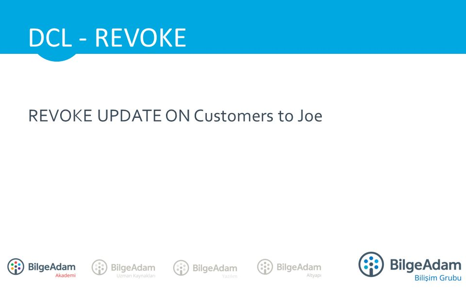 REVOKE UPDATE ON Customers to Joe DCL - REVOKE