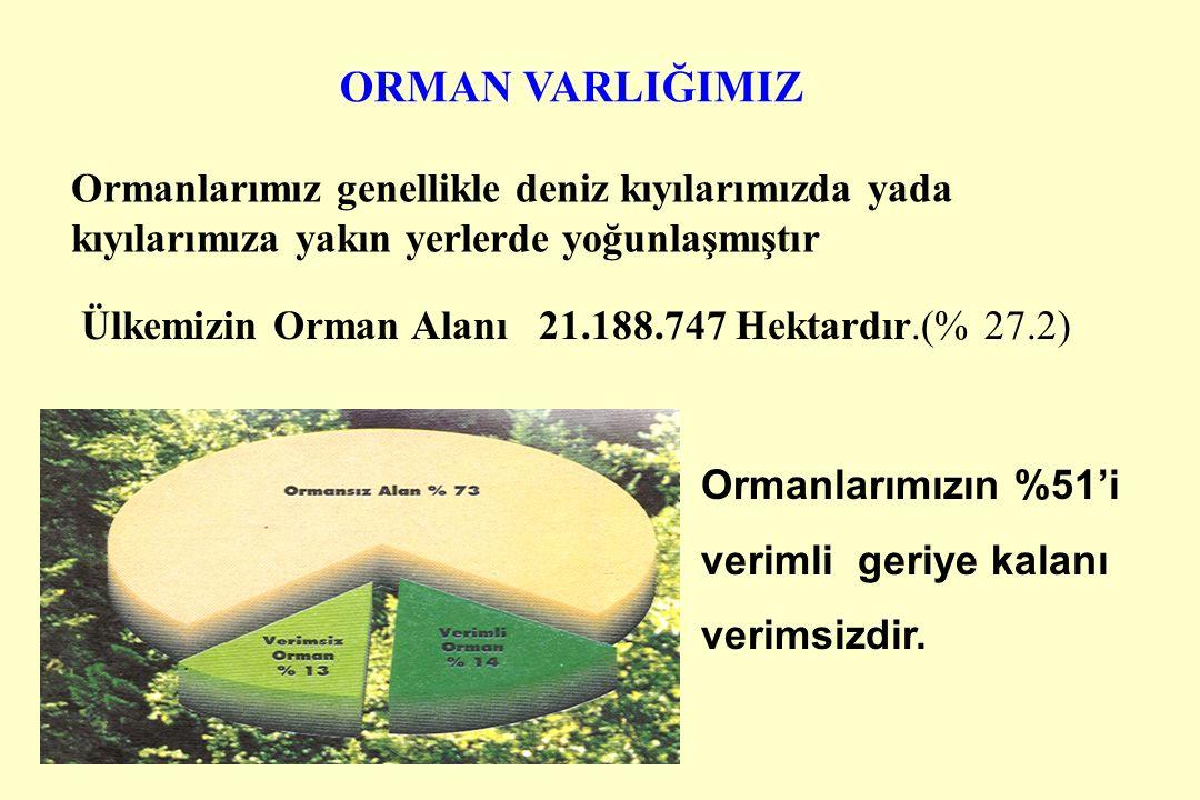 ORMAN VARLIĞIMIZ Ülkemizin Orman Alanı 21.188.747 Hektardır.(% 27.2) Ormanlarımızın %51'i verimli geriye kalanı verimsizdir.
