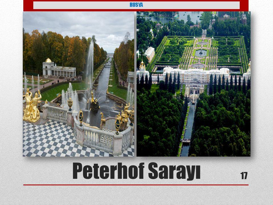 RUSYA Peterhof Sarayı 17