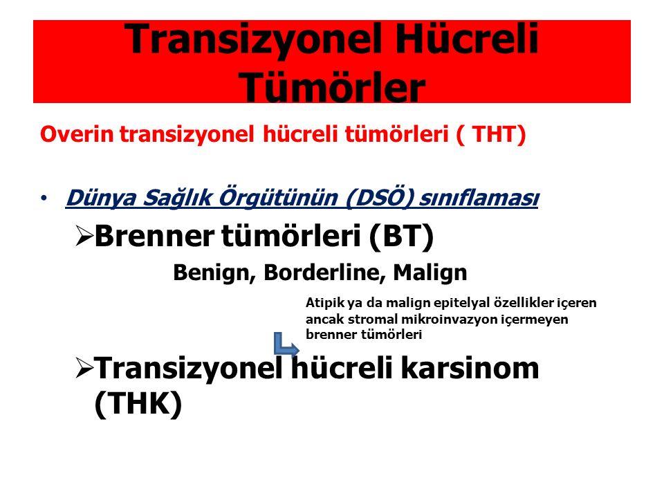 Transizyonel Hücreli Tümörler Overin transizyonel hücreli tümörleri ( THT) Dünya Sağlık Örgütünün (DSÖ) sınıflaması  Brenner tümörleri (BT) Benign, B