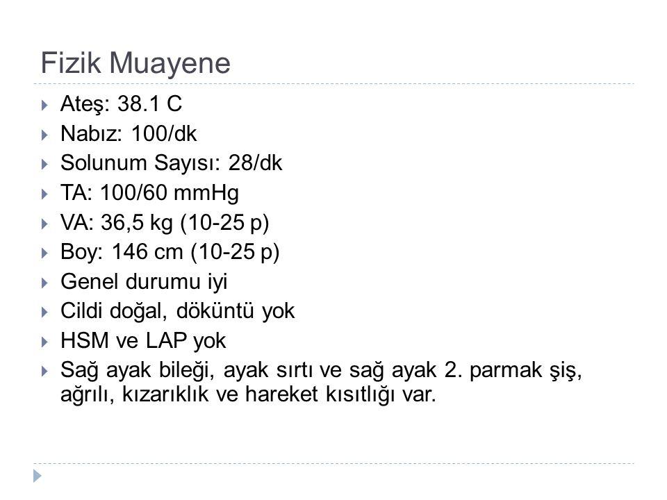 Fizik Muayene  Ateş: 38.1 C  Nabız: 100/dk  Solunum Sayısı: 28/dk  TA: 100/60 mmHg  VA: 36,5 kg (10-25 p)  Boy: 146 cm (10-25 p)  Genel durumu