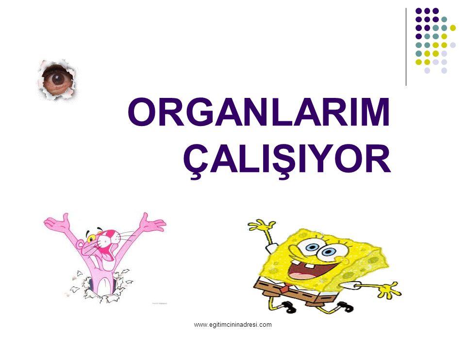 ORGANLARIM ÇALIŞIYOR www.egitimcininadresi.com
