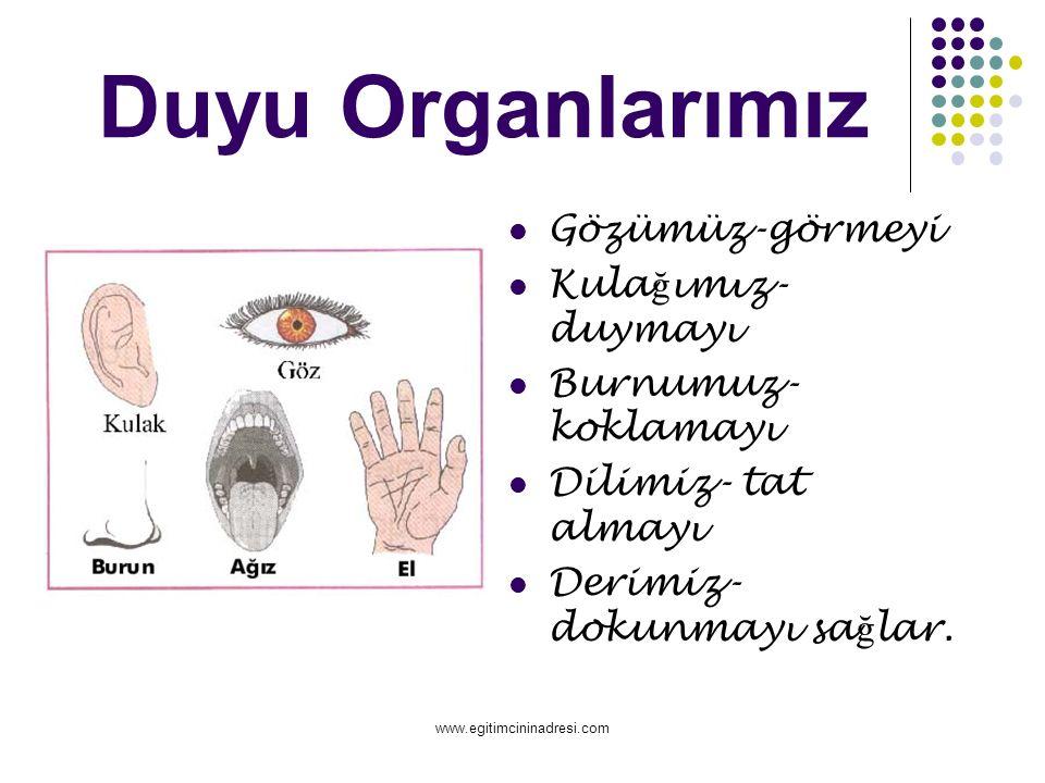 Duyu Organlarımız Gözümüz-görmeyi Kula ğ ımız- duymayı Burnumuz- koklamayı Dilimiz- tat almayı Derimiz- dokunmayı sa ğ lar.