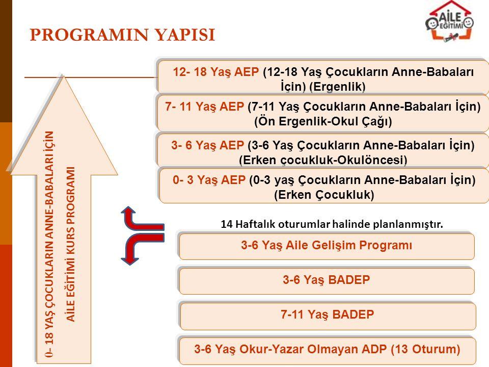 PROGRAMIN YAPISI 0- 18 YAŞ ÇOCUKLARIN ANNE-BABALARI İÇİN AİLE EĞİTİMİ KURS PROGRAMI 12- 18 Yaş AEP (12-18 Yaş Çocukların Anne-Babaları İçin) (Ergenlik