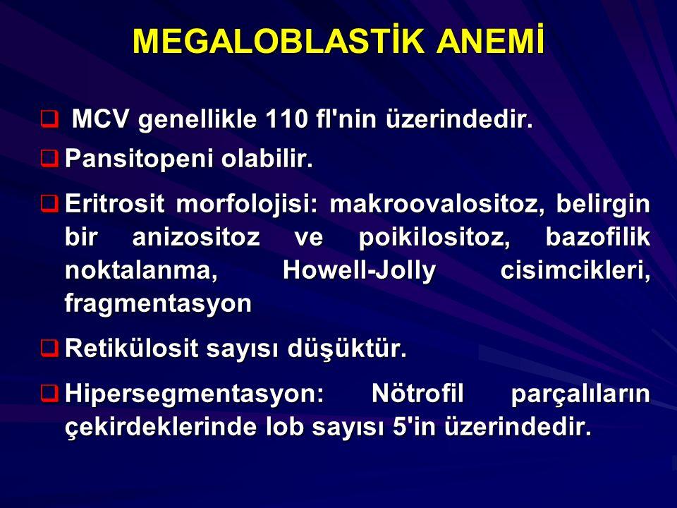 MEGALOBLASTİK ANEMİ  MCV genellikle 110 fl'nin üzerindedir.  Pansitopeni olabilir.  Eritrosit morfolojisi: makroovalositoz, belirgin bir anizositoz