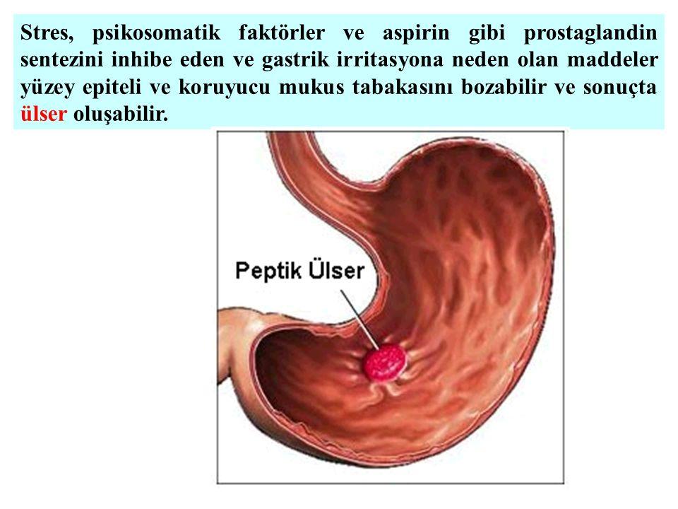 Stres, psikosomatik faktörler ve aspirin gibi prostaglandin sentezini inhibe eden ve gastrik irritasyona neden olan maddeler yüzey epiteli ve koruyucu