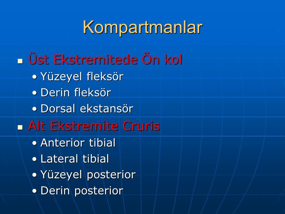 Cerrahi Tedavi Acil fasiyotomi Acil fasiyotomi