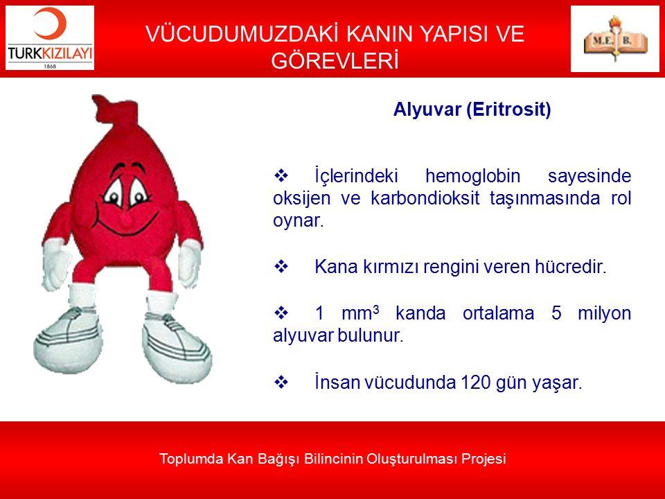 Toplumda Kan Bağışı Bilincinin Oluşturulması Projesi VÜCUDUMUZDAKİ KANIN YAPISI VE GÖREVLERİ Alyuvar (Eritrosit)  İçlerindeki hemoglobin sayesinde ok