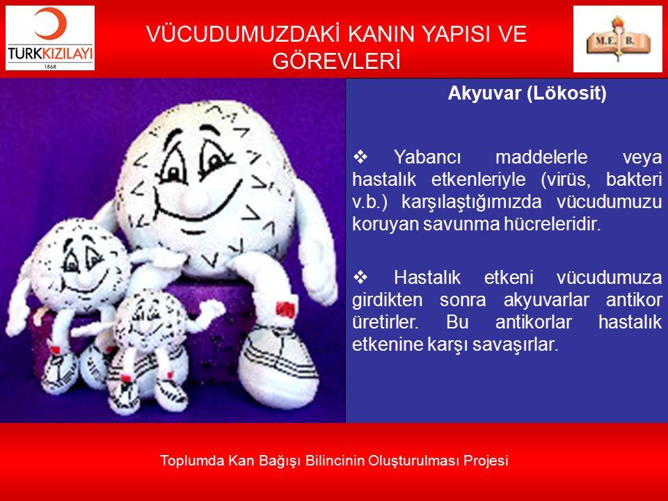 Akyuvar (Lökosit)  Yabancı maddelerle veya hastalık etkenleriyle (virüs, bakteri v.b.) karşılaştığımızda vücudumuzu koruyan savunma hücreleridir.  H