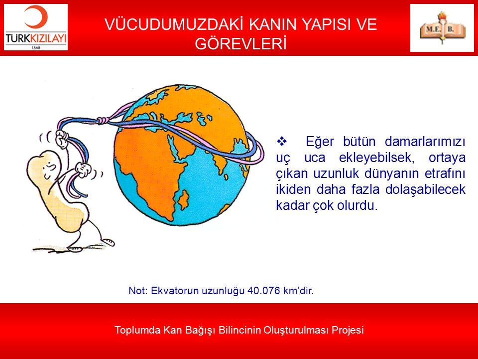 Toplumda Kan Bağışı Bilincinin Oluşturulması Projesi VÜCUDUMUZDAKİ KANIN YAPISI VE GÖREVLERİ 5000-6000 mL (5-6 litre) Normal bir insanda 5000-6000 mL (5-6 litre) kadar kan bulunmaktadır.