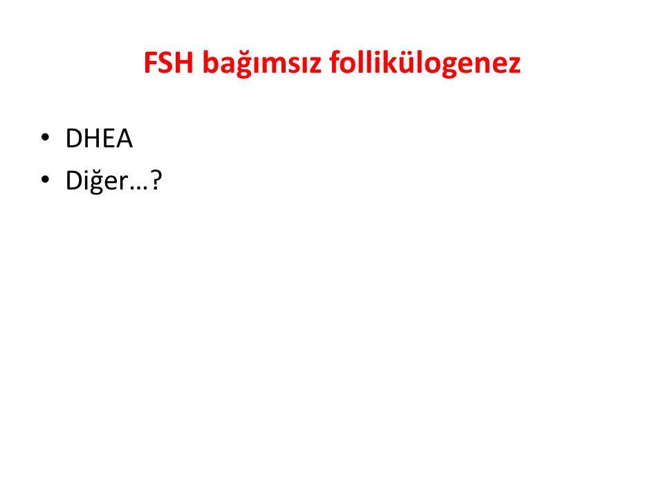 FSH bağımsız follikülogenez DHEA Diğer…?