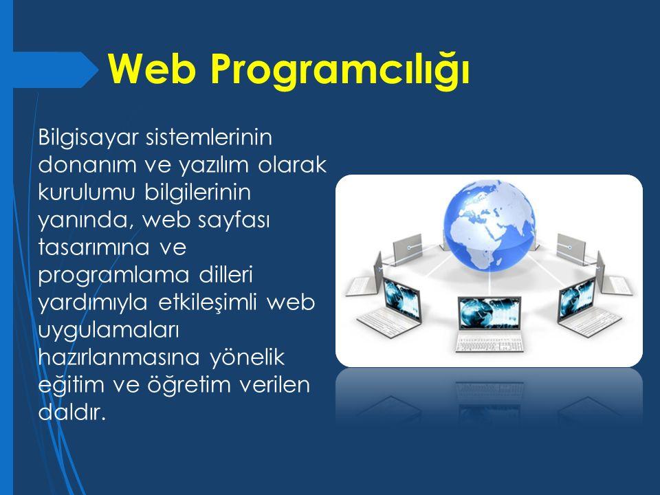 Bilgisayar sistemlerinin donanım ve yazılım olarak kurulumu bilgilerinin yanında, web sayfası tasarımına ve programlama dilleri yardımıyla etkileşimli