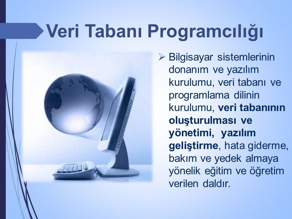  Bilgisayar sistemlerinin donanım ve yazılım kurulumu, veri tabanı ve programlama dilinin kurulumu, veri tabanının oluşturulması ve yönetimi, yazılım