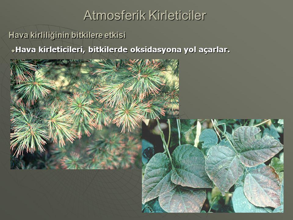 Hava kirliliğinin bitkilere etkisi Atmosferik Kirleticiler  Hava kirleticileri, bitkilerde oksidasyona yol açarlar.