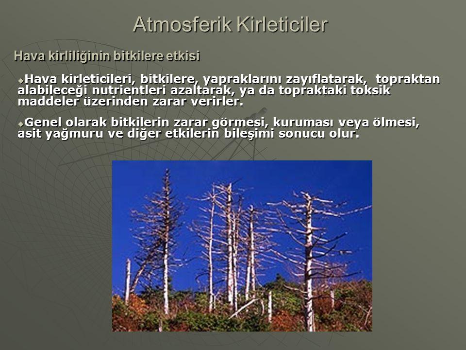 Hava kirliliğinin bitkilere etkisi Atmosferik Kirleticiler  Hava kirleticileri, bitkilere, yapraklarını zayıflatarak, topraktan alabileceği nutrientl