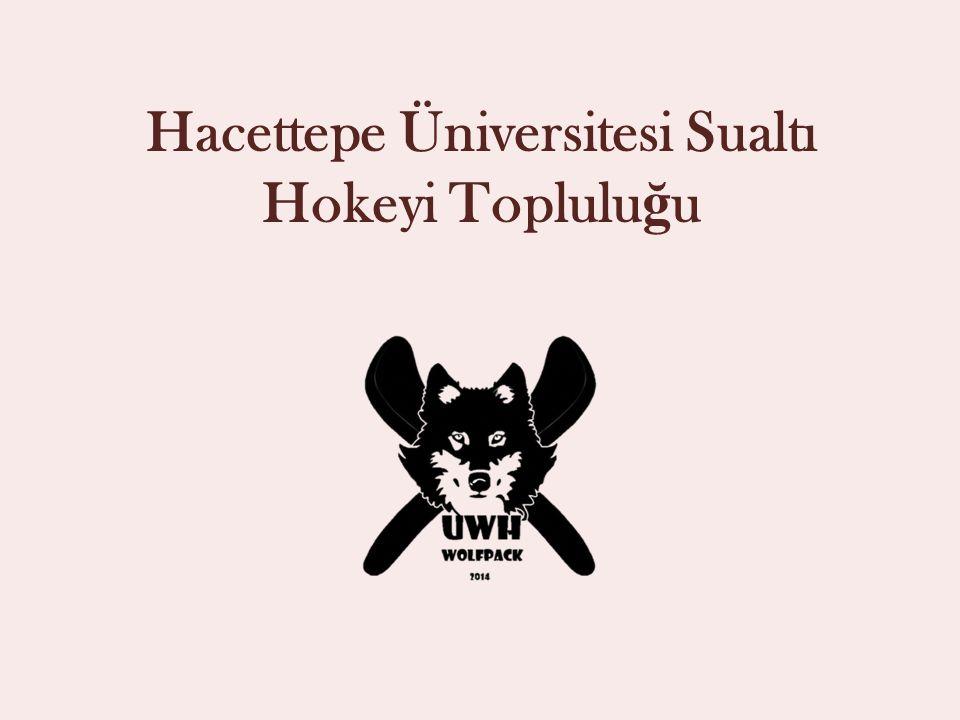 Hacettepe Üniversitesi Sualtı Hokeyi Toplulu ğ u