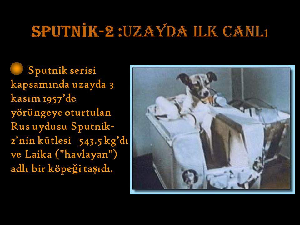 SPUTN İ K-2 :uzayda ilk canl ı Sputnik serisi kapsamında uzayda 3 kasım 1957'de yörüngeye oturtulan Rus uydusu Sputnik- 2'nin kütlesi 543.5 kg'dı ve Laika ( havlayan ) adlı bir köpe ğ i ta ş ıdı.