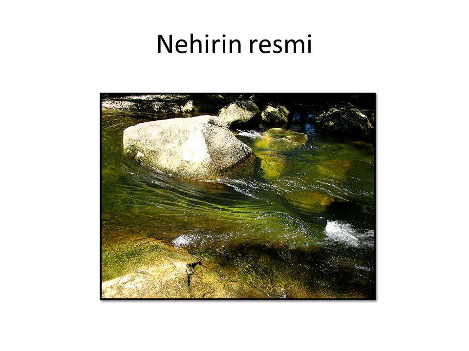 Nehirin resmi