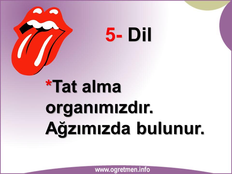 5- Dil *Tat alma organımızdır. Ağzımızda bulunur.