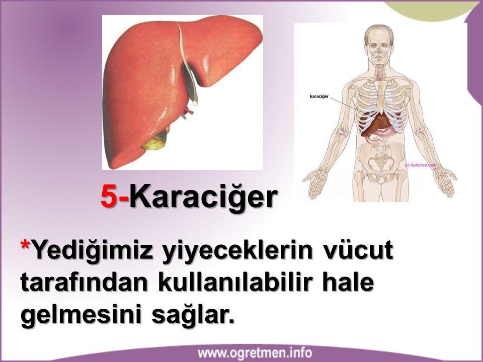 5-Karaciğer *Yediğimiz yiyeceklerin vücut tarafından kullanılabilir hale gelmesini sağlar.