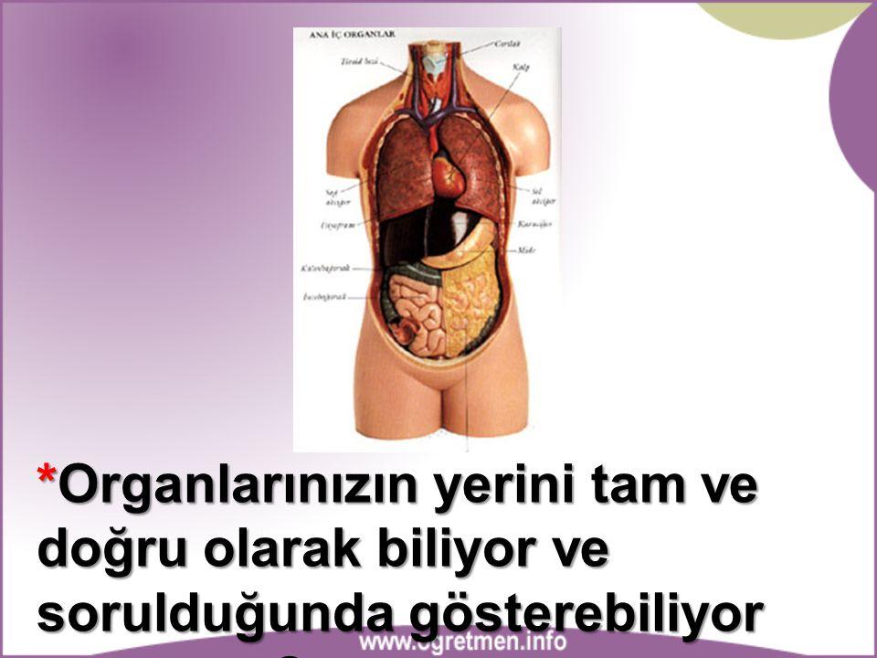 *Organlarınızın yerini tam ve doğru olarak biliyor ve sorulduğunda gösterebiliyor musunuz?