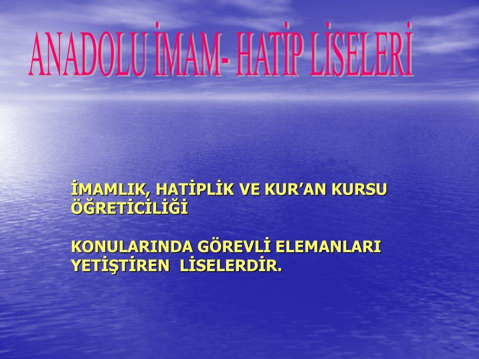 Anadolu Otelcilik Ve Turizm Meslek Liseleri  Servis ve yemek olmak üzere iki bölümden oluşmaktadır.
