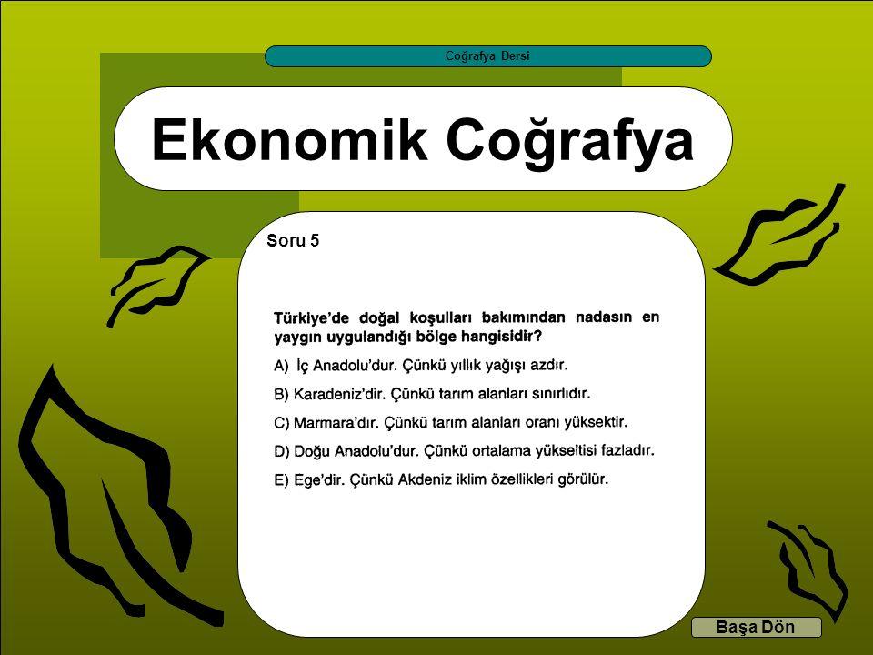 Ekonomik Coğrafya Coğrafya Dersi Başa Dön Soru 5