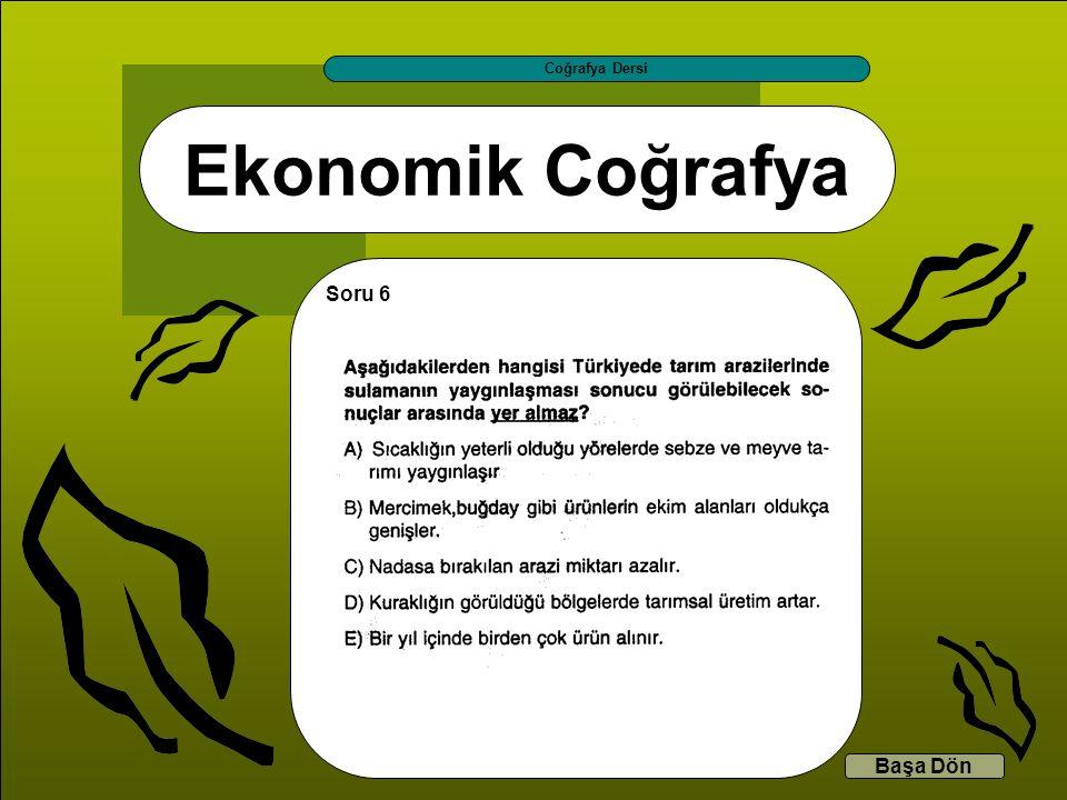 Ekonomik Coğrafya Coğrafya Dersi Başa Dön Soru 6