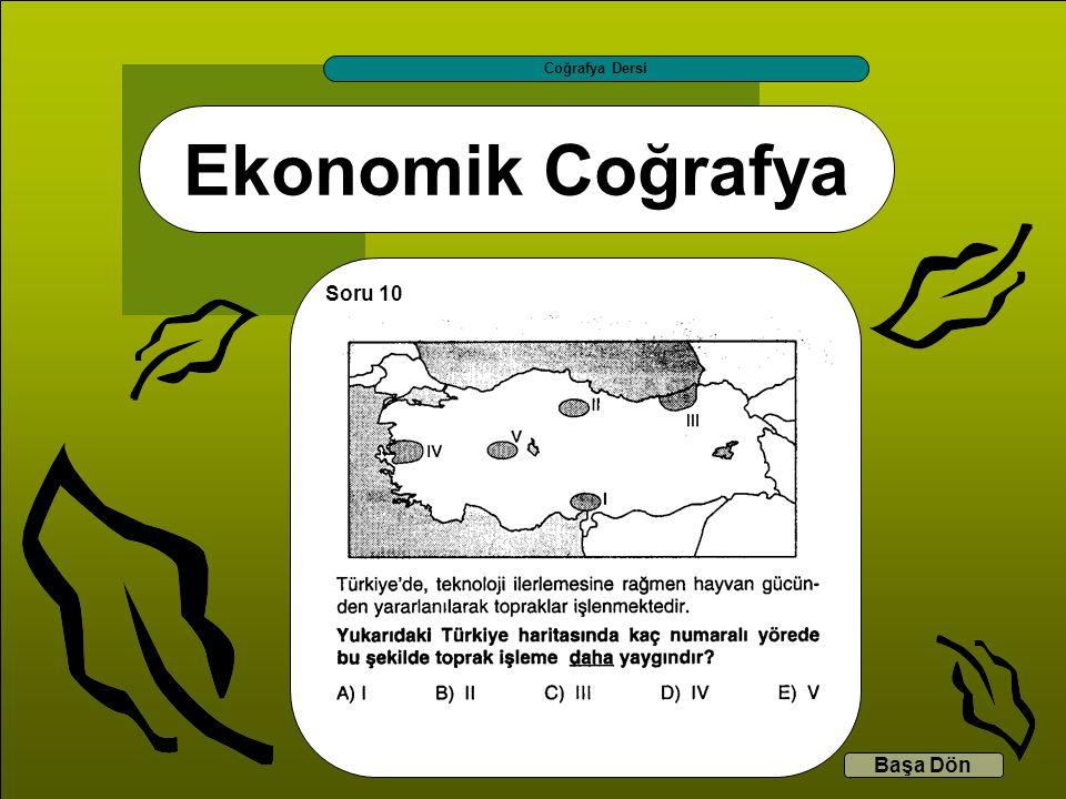 Ekonomik Coğrafya Coğrafya Dersi Başa Dön Soru 10