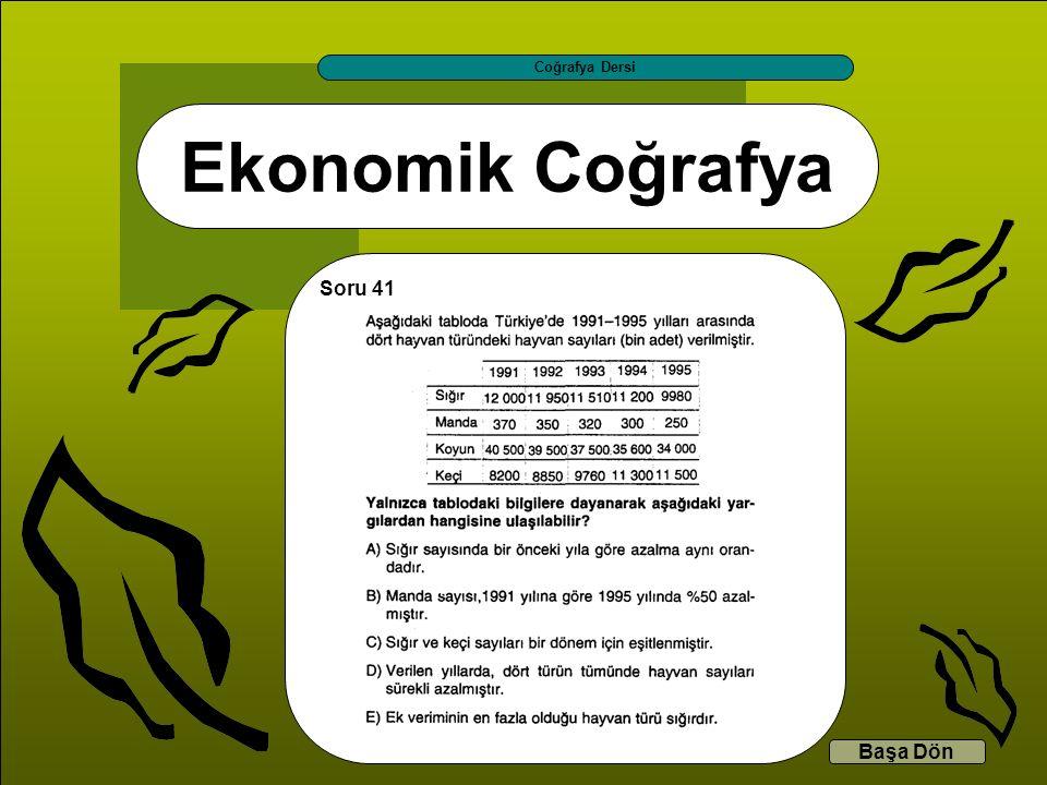 Ekonomik Coğrafya Coğrafya Dersi Başa Dön Soru 41