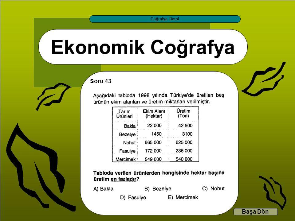Ekonomik Coğrafya Coğrafya Dersi Başa Dön Soru 43