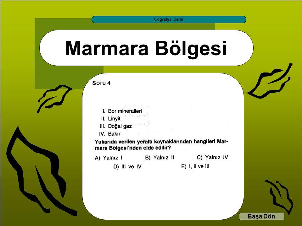 Marmara Bölgesi Coğrafya Dersi Başa Dön Soru 4