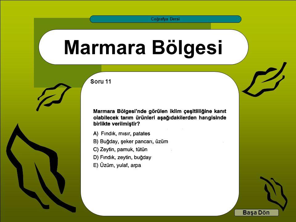 Marmara Bölgesi Coğrafya Dersi Başa Dön Soru 11