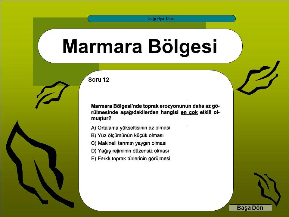Marmara Bölgesi Coğrafya Dersi Başa Dön Soru 12