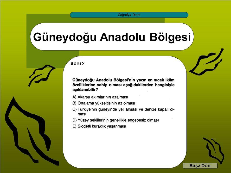 Güneydoğu Anadolu Bölgesi Coğrafya Dersi Başa Dön Soru 2