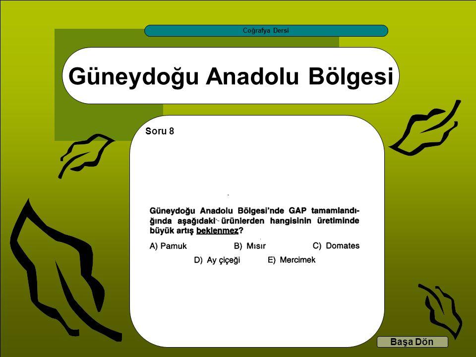 Güneydoğu Anadolu Bölgesi Coğrafya Dersi Başa Dön Soru 8